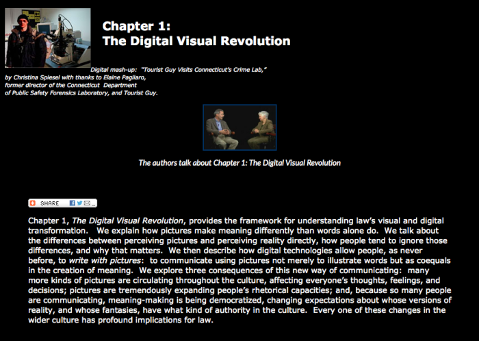 Visual Law - Law on Display 1